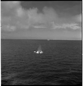 Valfångare - image 47