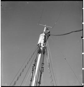 Valfångare - image 220