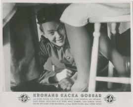 Kronans käcka gossar - image 57