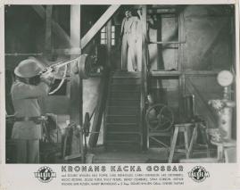 Kronans käcka gossar - image 27
