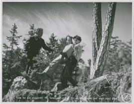 Hans Nåds testamente - image 6