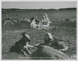Hans Nåds testamente - image 53