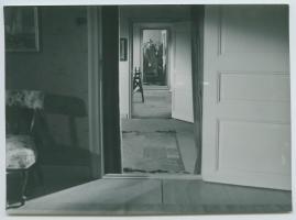Uppåt igen - image 50