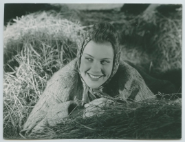 Landstormens lilla argbigga - image 78