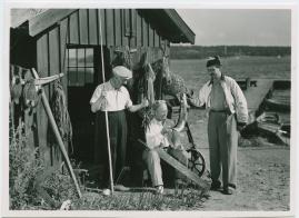 Magistrarna på sommarlov - image 48