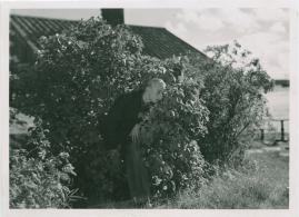 Magistrarna på sommarlov - image 53