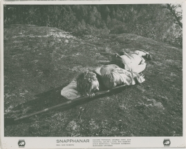 Snapphanar - image 5