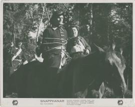 Snapphanar - image 48