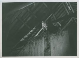 Lågor i dunklet - image 56