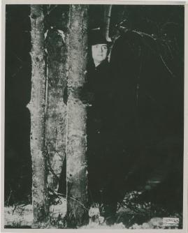 Lågor i dunklet - image 19