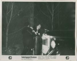 Fallet Ingegerd Bremssen - image 9
