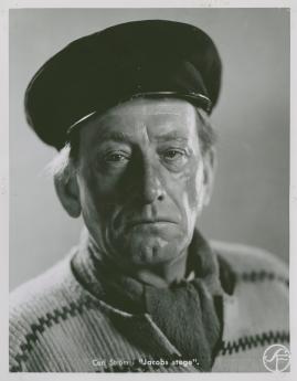 Jacobs stege - image 21