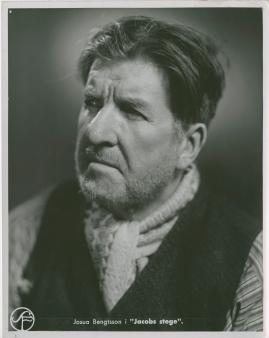 Jacobs stege - image 84