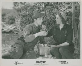 Rospiggar - image 4