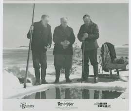 Rospiggar - image 6