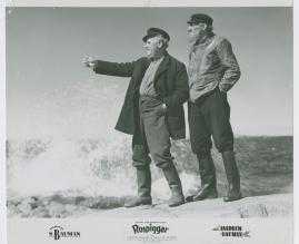 Rospiggar - image 22