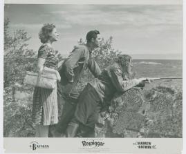 Rospiggar - image 74