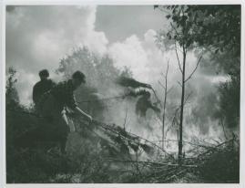 En vår i vapen - image 60