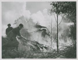 En vår i vapen - image 43