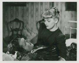 Elvira Madigan - image 16