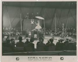Elvira Madigan - image 54