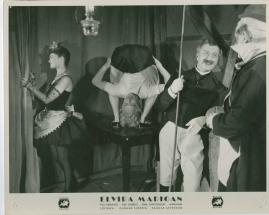 Elvira Madigan - image 5