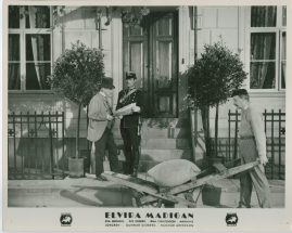 Elvira Madigan - image 8