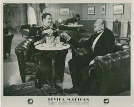 Elvira Madigan - image 27