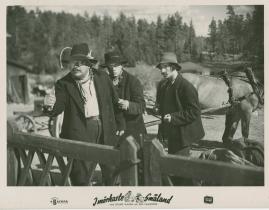 I mörkaste Småland - image 25