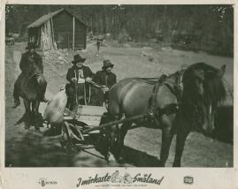 I mörkaste Småland - image 39