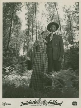 I mörkaste Småland - image 41