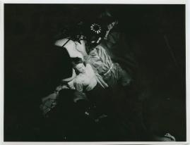 Brödernas kvinna - image 57