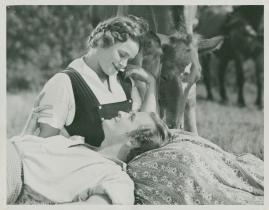 Livet på landet - image 25