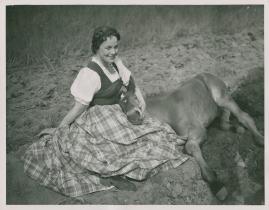 Livet på landet - image 26