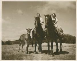 Livet på landet - image 4