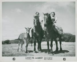 Livet på landet - image 27