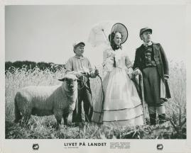 Livet på landet - image 5