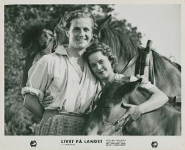 Livet på landet - image 21