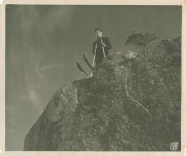 Skogen är vår arvedel - image 42