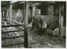 Flickan och Djävulen : En ballad i skymningen - image 75