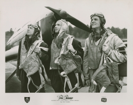 Tre söner gick till flyget - image 7