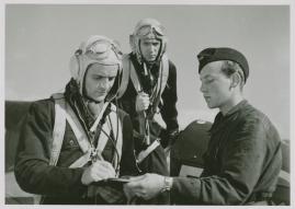 Tre söner gick till flyget - image 82