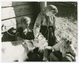 Barnen från Frostmofjället - image 31