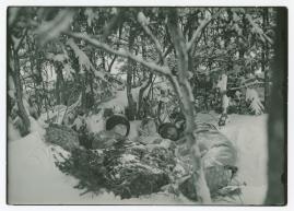 Barnen från Frostmofjället - image 44