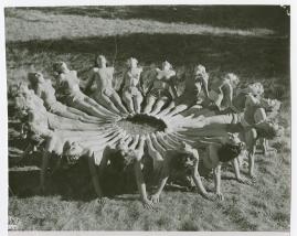 Blåjackor - image 24