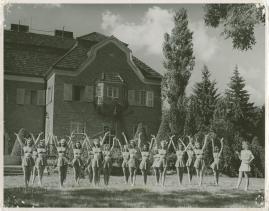 Blåjackor - image 49
