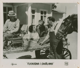 Flickorna i Småland - image 28