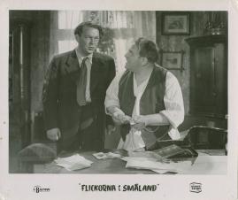 Flickorna i Småland - image 29