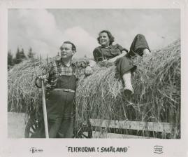 Flickorna i Småland - image 32