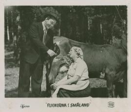Flickorna i Småland - image 4